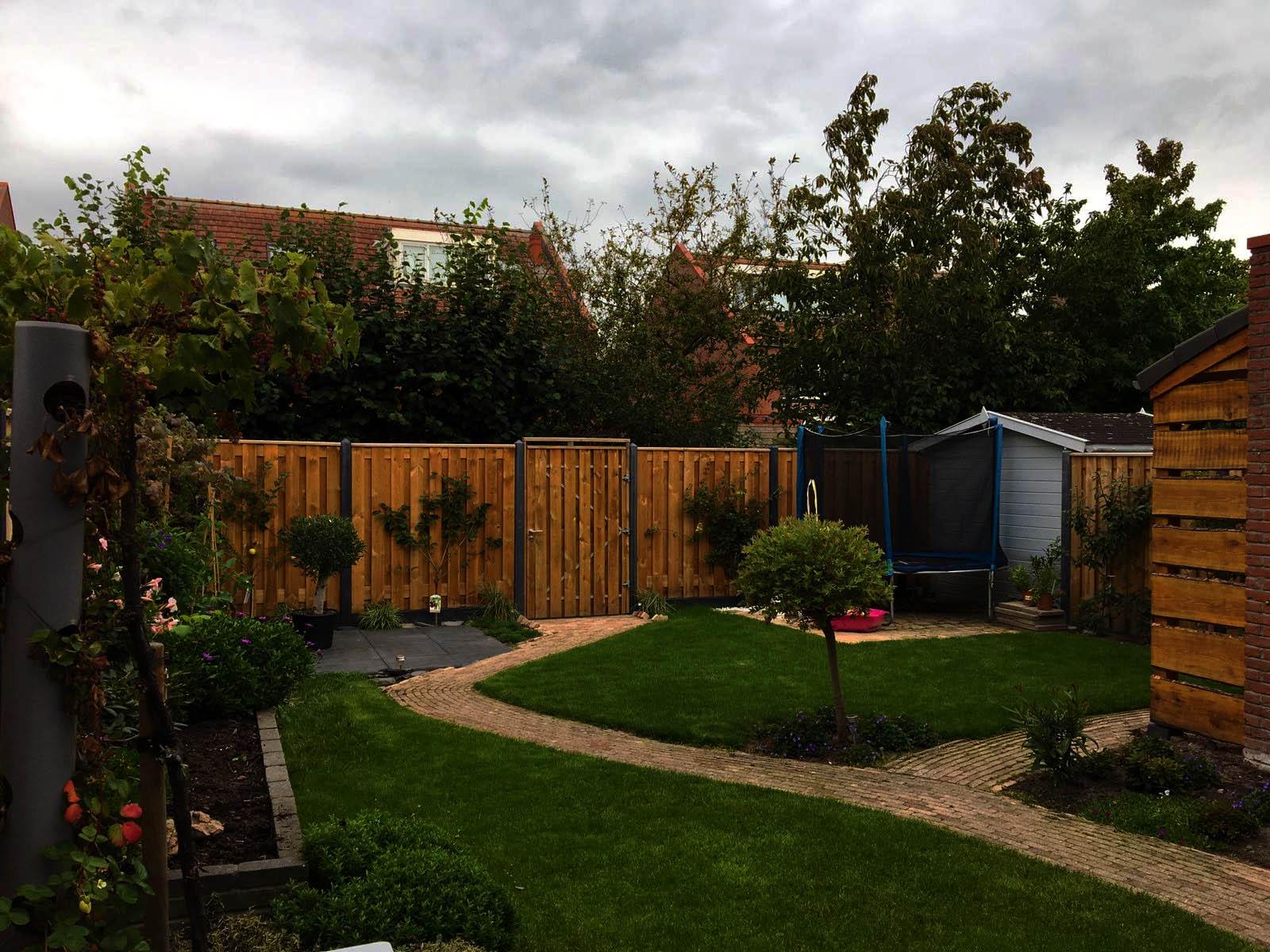 Beginnen Sie das neue Jahr mit einem Garten-Upgrade